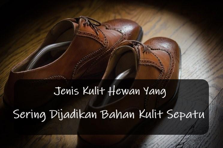 Jenis Kulit Hewan Yang Sering Dijadikan Bahan Kulit Sepatu